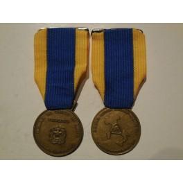 Medaglia ai benemeriti per gli aiuti durante l'alluvione del 2000